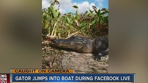 Gator jumps into boat during Facebook LIVE