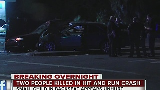 Two people killed in hit and run crash in Tampa - Video