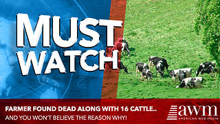 Farmer Is Found Dead Along With 16 Of His Cows. Leads To Unsettling Find By Authorities - Video