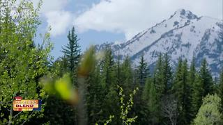 Great Yellowstone Thaw - Video