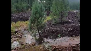 Heavy rainstorm causes flash flooding in Arizona - Video