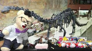 Learn about Fossils with Chumsky Bear | Real Fossil Toy Opening | Educational Videos for Kids