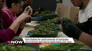Bill to decriminalize small amounts of marijuana