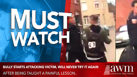 Bully Starts Attacking Victim, Will Never Try It Again After Being Taught Painful Lesson