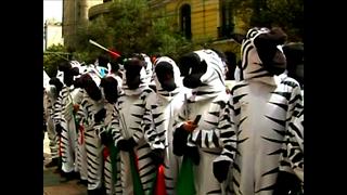 Bolivian Road Safety Zebras - Video