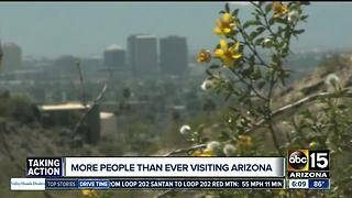 Why are more people more than ever coming to Arizona? - Video