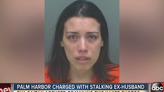 Palm Harbor woman charged with stalking ex-husband - Video