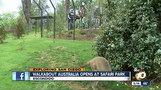 Walkabout Australia opens - Video