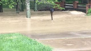 Heavy Rains Cause Flash Flooding in Parts of Kentucky - Video