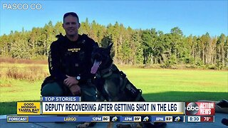Pasco County deputy recovers after being shot during barricade situation