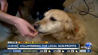 Colorado Gives Day: Volunteering for local non-profits - Video