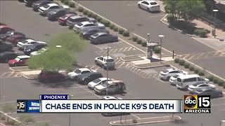 Phoenix police K-9 killed, suspect taken into custody following pursuit