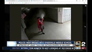 MSP: Burglar breaks into Carroll Co. school - Video