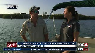 Valentines Day at Tarpon Bay Explorers - 8am  live report - Video