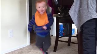 Cat Knocks Over A Toddler Boy - Video