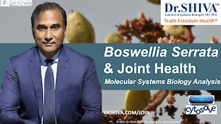 2 Ways How Boswellia Affects Joint Health