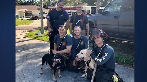 House fire extinguished, 2 dogs rescued in Fort Pierce