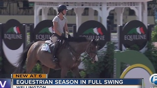 Equestrian season in full swing - Video
