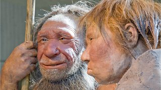 New Study Suggests Climate Change Caused Cannibalism Among Neanderthals