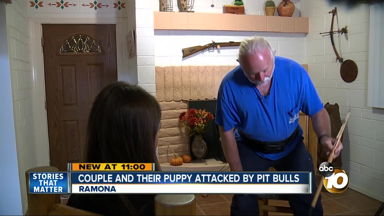 Pit bulls attack Ramona couple and their puppy
