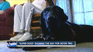 """Super Dogs"" make a difference for trio of sisters"