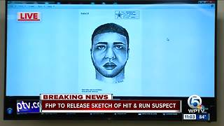 Sketch released in hit and run case