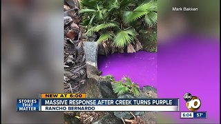Massive response after Rancho Bernardo creek turns purple