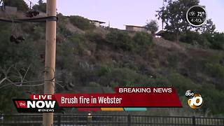 Crews knock down 'suspicious' brush fire in Webster - Video