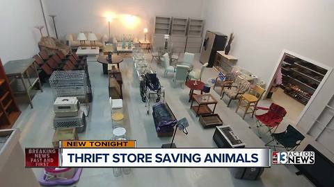 Hearts Alive Village thrift store expands in size and hours to benefit animals