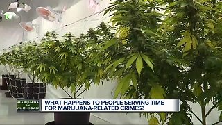 What happens for people serving time for pot-related crimes?