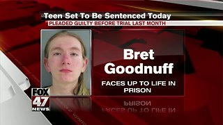 Teen scheduled to be sentenced in beating of grandmother