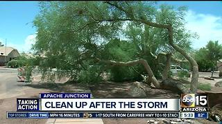 Storm cleanup begins after monsoon storm - Video