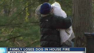 House destroyed, family dog killed in New Berlin hous fire - Video