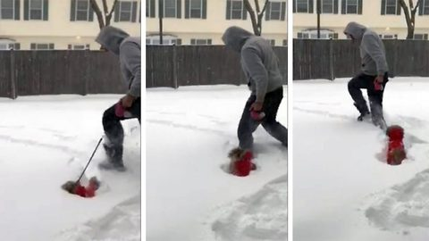 Snow-where to go! Small-legged puppy gets stuck on snowy walk