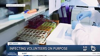 In-Depth: Infecting volunteers with COVID-19 on purpose