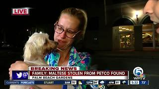 Owner reunited with dog stolen from Petco in Palm Beach Gardens