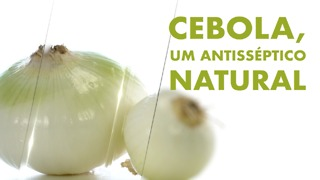 Cebola, antisséptico natural.