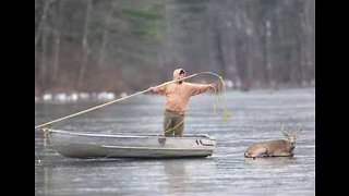 Man Rescues Deer From Frozen Greeley Lake, Pennsylvania - Video