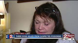 Three dogs killed from suspected poisoning