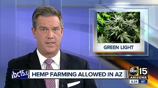 Governor Ducey approves law allowing hemp production in Arizona - Video