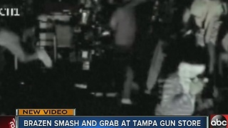 Brazen smash and grab at Tampa gun store - Video