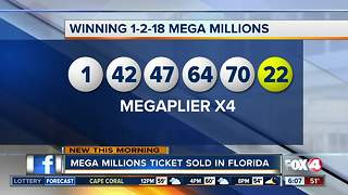 $4 million Mega Million ticket sold in Florida - Video
