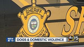 Domestic violence victims refusing to leave, fearful for pets - Video