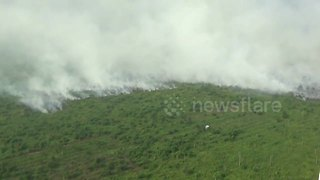 40 hectares of forest burn in Indonesia