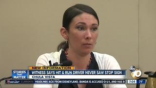 Parents testify about hit and run crash - Video