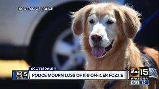 Scottsdale police mourning loss of K9 Fozzie - Video
