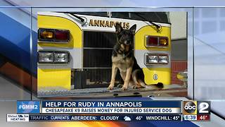 Annapolis K9 Rudy needs your help - Video