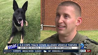 K-9 cops track down alleged vehicle thieves in Cecil County