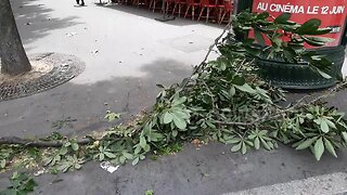 Strong winds from Storm Miguel batter French capital