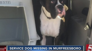 Missouri Family Searching For Missing Service Dog - Video